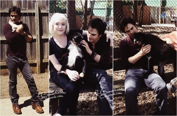 Ian a visité un refuge pour animaux en Géorgie. | Le 10 avril 2014.