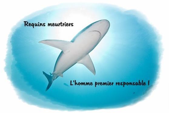 Article du Télégramme du 15 Février 2012
