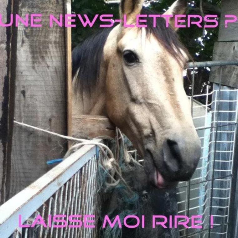 #News-letters   #Azur