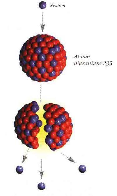 Nucléaires (Réactions)