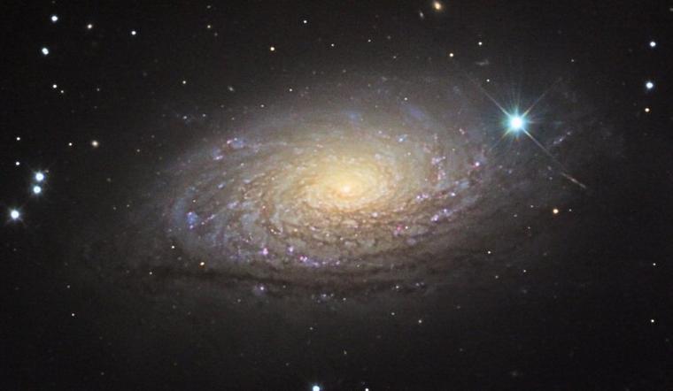 Galaxie du Tournesol M63 = Sunflower Galaxy