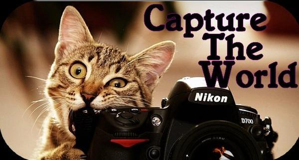 Bienvenue Sur Capture-The-World !