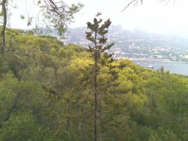 la nature(2)