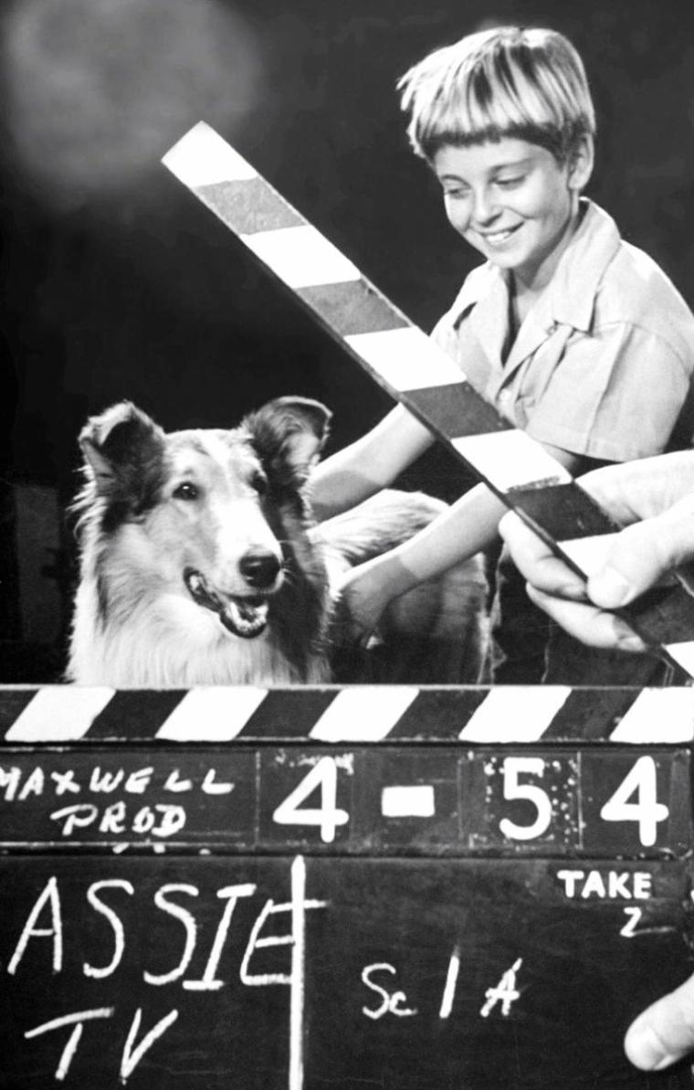 Novembre 1953, Los-Angeles, Tommy RETTIG et la chienne Lassie lors du tournage de la série T.V. du même nom vu par George SILK.