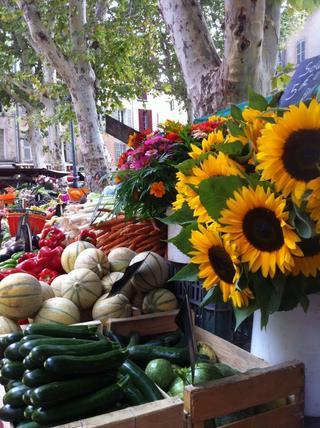Booking in Aix en Provence +33 (0)6 68 09 54 56