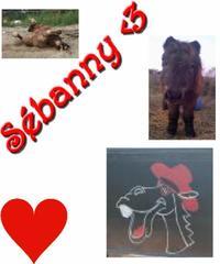 Le Sébanny ♥