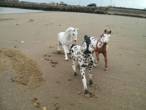 Petite pause a la plage