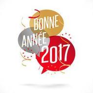 1er article de 2017: Bonne année
