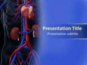 Things to Understand using Cardiovascular System Diseases PowerPoint Template