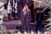 12 choses que vous ne saviez peut-être pas sur Harry Potter