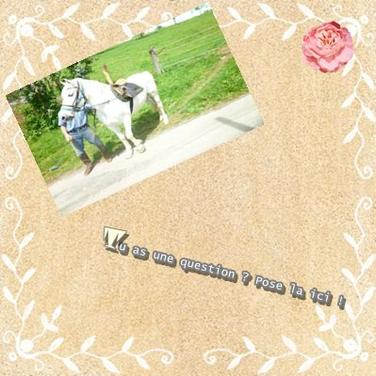 """""""l'équitation est un sport individuel qui se pratique à deux..."""""""