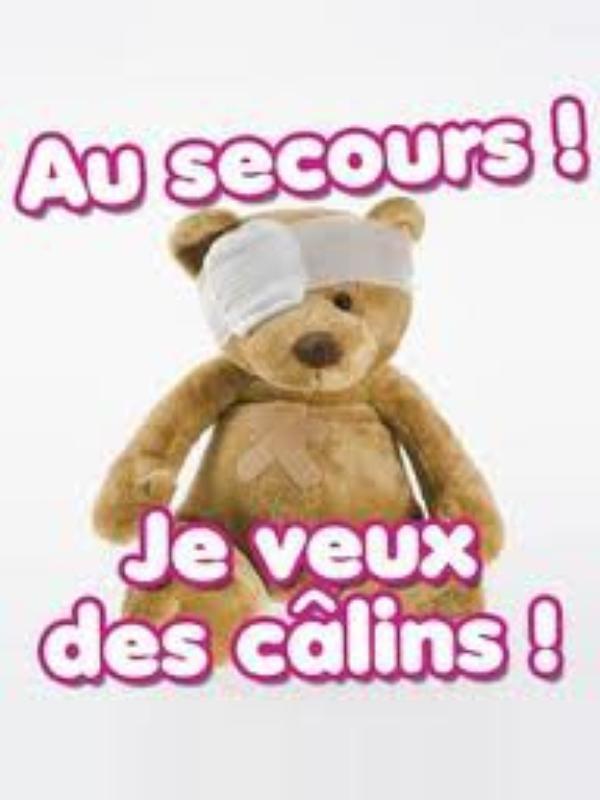 C@lins , calins , calins . . . .