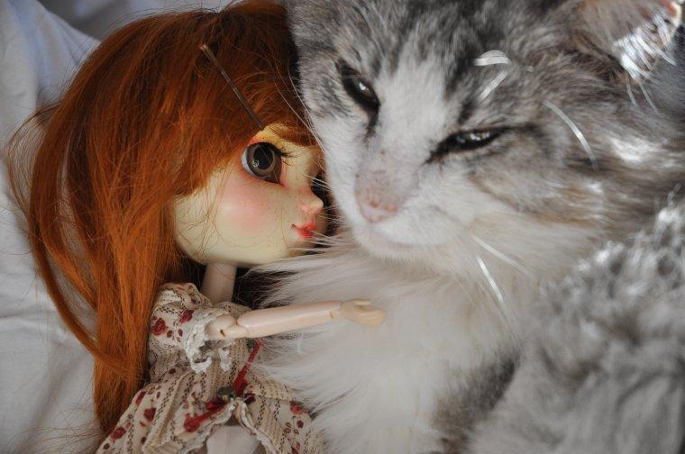 Noé and my cat :3