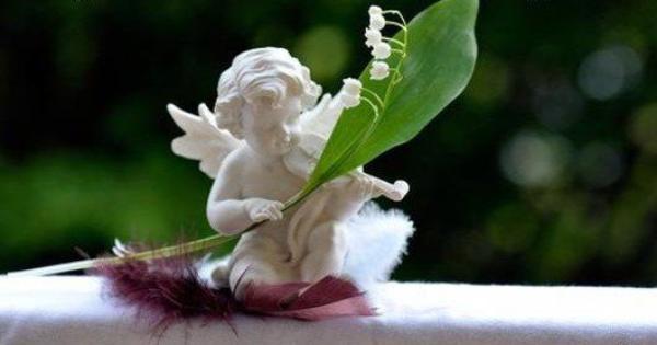 Le joli mois de mai est là et le muguet apporte le bonheur aux portes de tous les jardins.