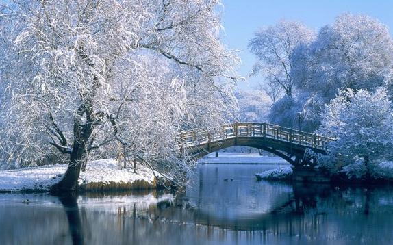 La neige si belle soit-elle, apporte tant de joie et de paix mais elle peut causer bien des dégâts aussi.