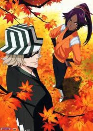 Le Couple Kisuke Urahara / Yoruichi Shihouin