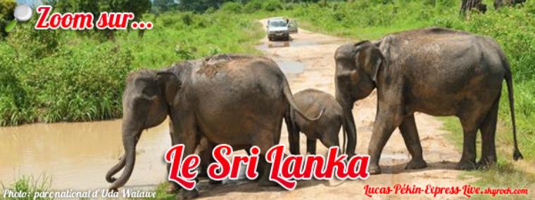 BONUS - Zoom sur... le Sri Lanka