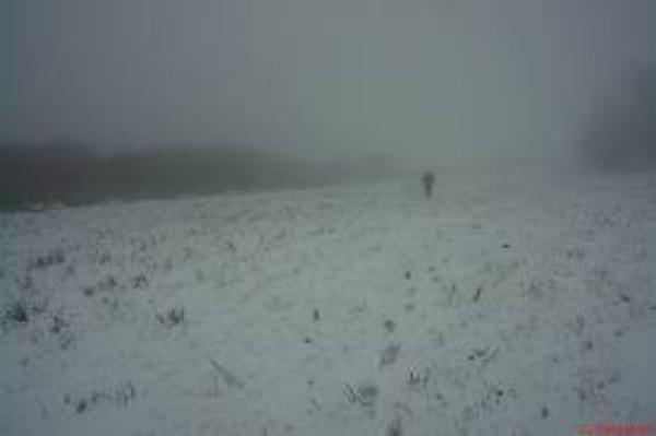 Le Blizzard
