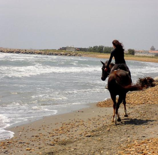 Vamos a la playa :D