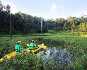 A Few Details About Khao Sok National Park Tour