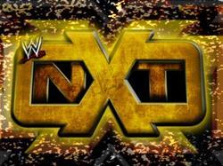 D'autres renvois à venir du côté de NXT