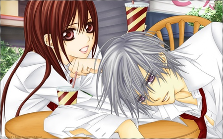 Vampire Knight [Manga / Anime]