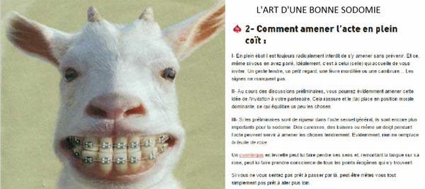 sodomie ......PETITE LECON POUR CERTAINES ET CERTAINS PETITS RAPPELS POUR D AUTRES !!!!! PARTIE 1