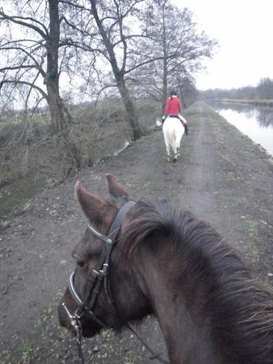 Ballade frisquette avec If et Marjo et moi, sur Ulrika! (28/01/12)