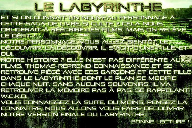 Bienvenue dans le Labyrinthe !