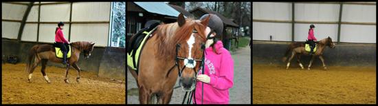 Ensembles nous formons un couple Extraordinaire ♥ Tu es un poney EXTRA, Et moi, une fille Ordinaire ♥