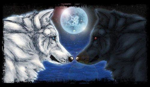 Communauté Loup