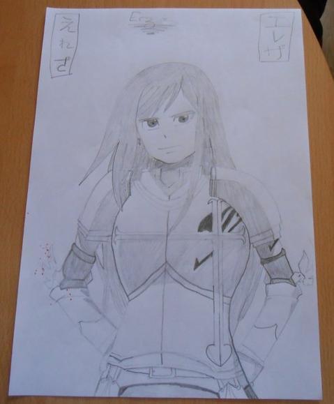 Fairy Tail                   (n°1)