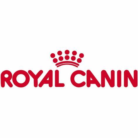 Royal Canin sponsorise des combats entre chiens et ours en Ukraine !