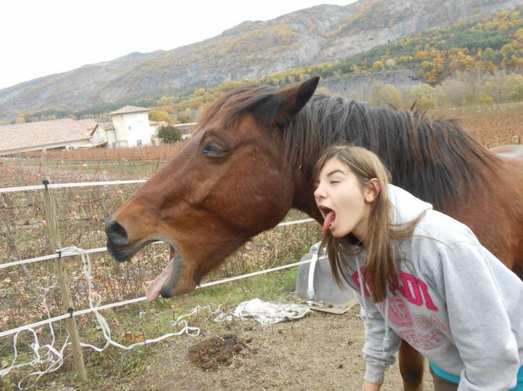 """""""Un cheval qui veut vous virez vous vires éperons , ou pas éperons""""♥"""