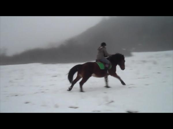 Balade sous la neige ♥
