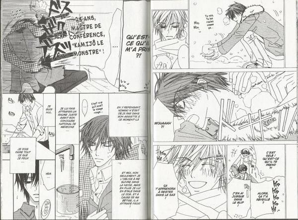 Junjou Romantica Tome 3-9