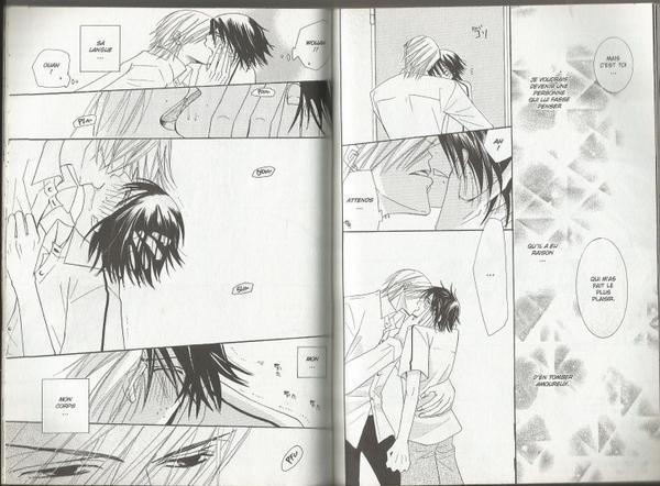 Junjou Romantica Tome 4-10