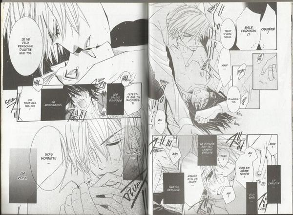 Junjou Romantica - Tome 6-8