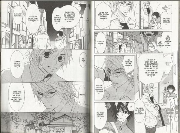 Junjou Romantica - Tome 7-10