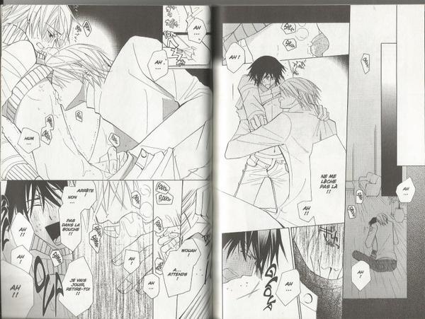 Junjou Romantica - Tome 7-12