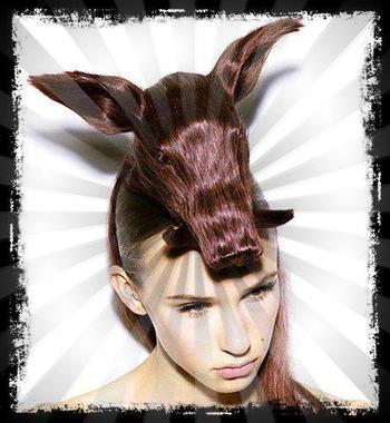 Le top 5 des coiffures top délires !!