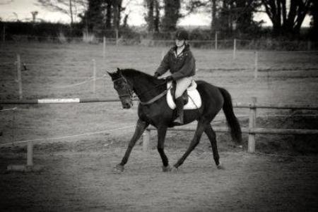 Rien n'est plus fort que la complicité d'un cheval et son cavalier. ♥