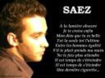 Concert Damien Saez