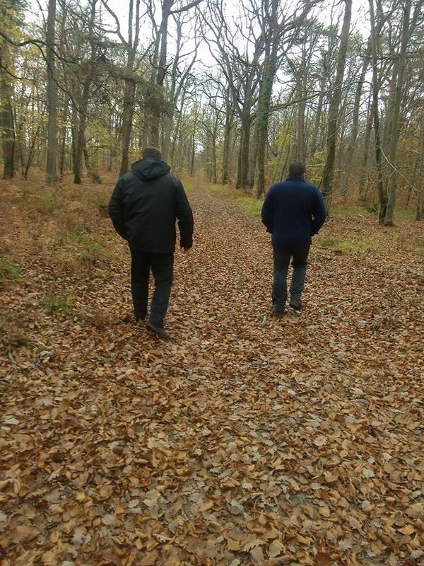 promenade en foret en famille