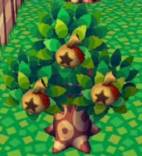 ~L'arbre à clochettes~ Savoir s'en servir!^^