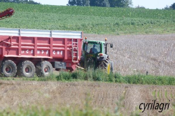 arachage pomme de terre 2011