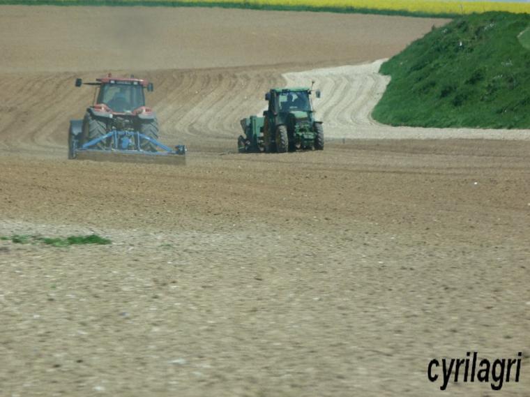 plantation de pomme de terre 2012