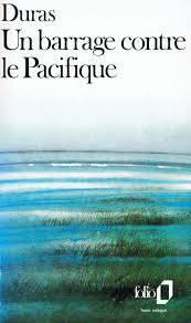Chronique | Un barrage contre le Pacifique