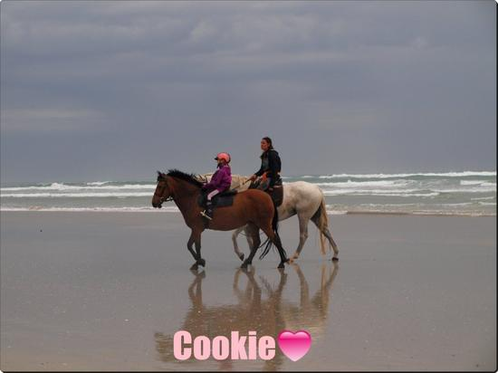 Cookie ♥ 20/08/11
