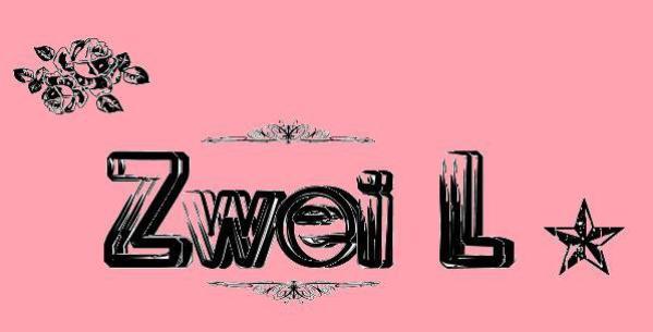 Zwei L 0fficiel